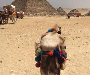 cairo, egypt, and pyramids image
