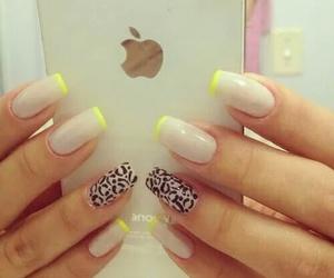 amarillo, nails, and uñas image