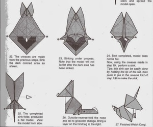 3, corgi, and diagrams image