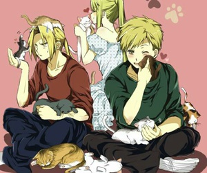 anime, cats, and fullmetal alchemist image