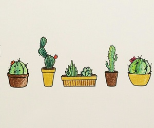 cactus and green image