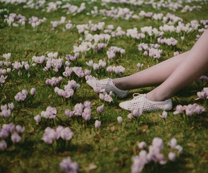 flowers, shoes, and legs image