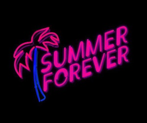 summer forever and palm trees image