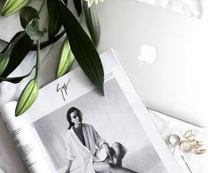 white, green, and magazine image