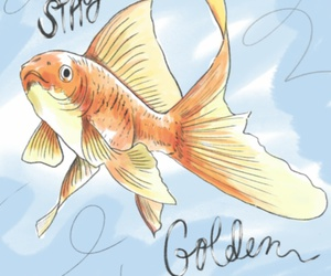 fish, gold, and golden image