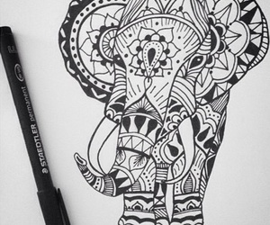 drawing and elefante image