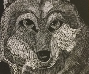 creative, wolf, and wolfblood image