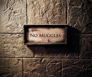 muggles, potter, and wonderful image