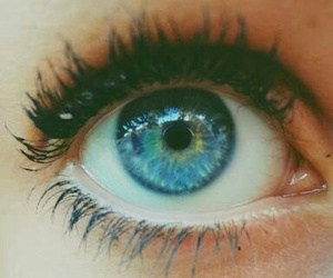 blue, blue eye, and cool image