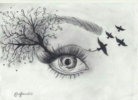eye, bird, and art image