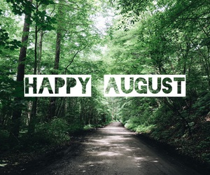 August, forest, and green image