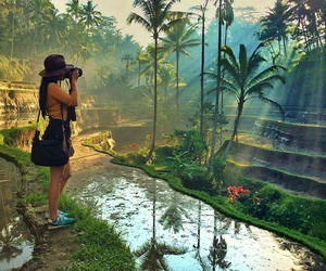 bali, nature, and travel image