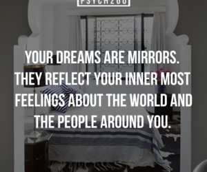dreams and facts image