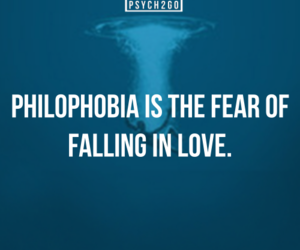 quote, love, and fear image