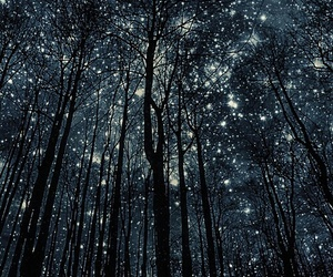 beauty, nature, and starry sky image