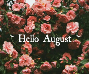 August, flowers, and hello august image