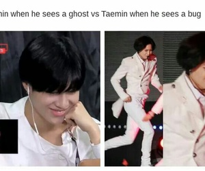 funny and Taemin image