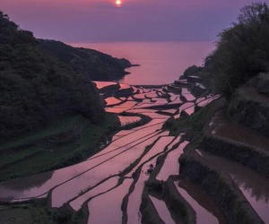 sunset, japan, and nature image