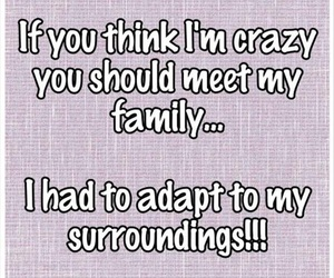 crazy, family, and funny image