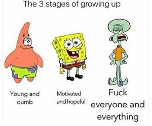 funny, spongebob, and life image