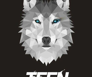 teen wolf, wolf, and wallpaper image