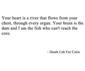 death cab for cutie, quote, and text image