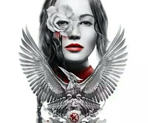 mockingjay, katniss, and hunger games image