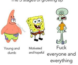 funny, life, and spongebob image