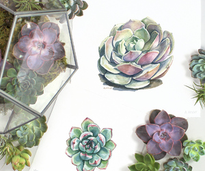 drawing, pretty, and succulents image