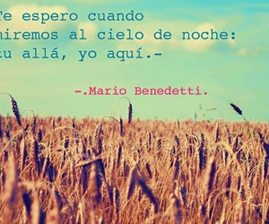 benedetti and cielo image
