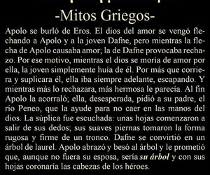 amor, mitos, and apolo image