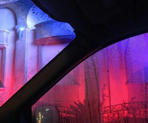 neon, pink, and rain image