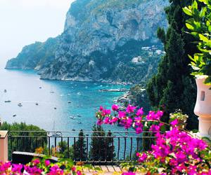 beach, flowers, and italia image