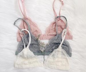 bra, girl, and fashion image
