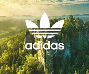 adidas, green, and Logo image