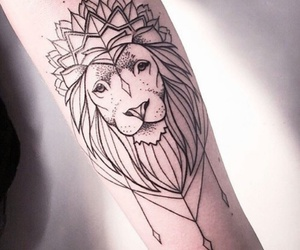 beautiful, lion, and swag image