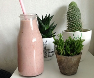 cactuses, strawberry smoothie, and fruit smoothie image