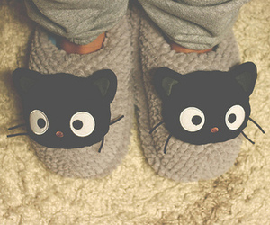 cute, cat, and slippers image