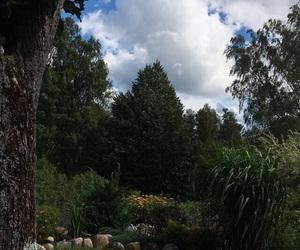 beautiful, latvija, and country image