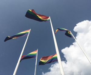 aesthetic, flag, and lgbt image