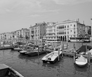 black and white, life, and venice image