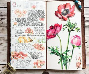 journal and flowers image