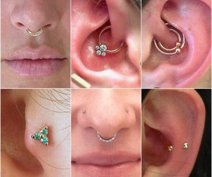 nose piercing, piercing, and septum image