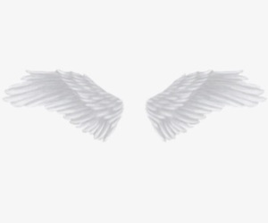 aesthetic, angel, and header image