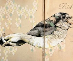 bird, art, and hand image