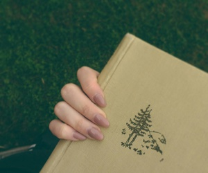 book, nails, and books image