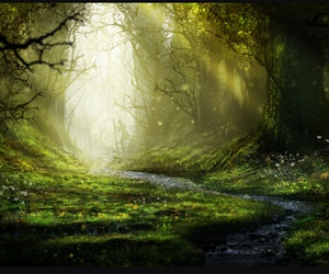 forest, enchanted, and green image