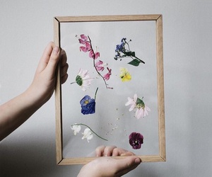 flowers, press, and pれ image