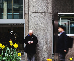 buildings, flowers, and people image