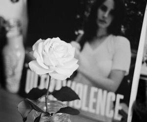 rose, ultraviolence, and lana del rey image